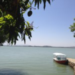 A view from an island in Lake Tana
